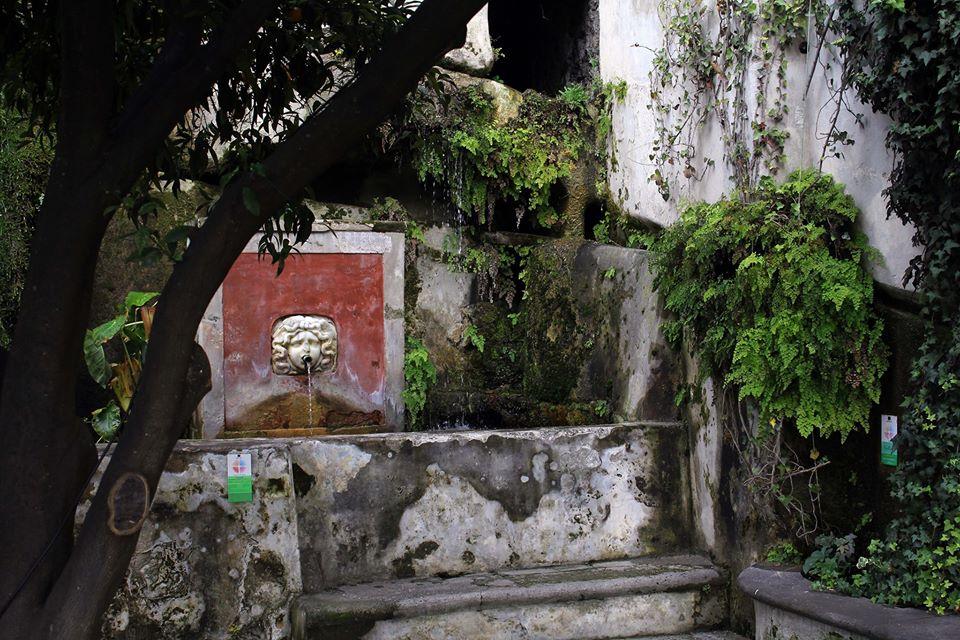 fontana giardino della minerva parte II 5