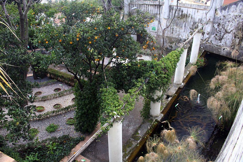 fontana giardino della minerva parte II 6
