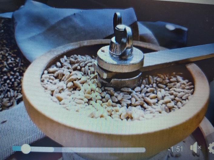 Il grano e il pane
